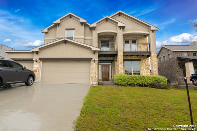 New Braunfels Single Family Home For Sale: 312 Green Heron