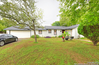 Medina County Single Family Home For Sale: 311 Renfro Dr