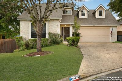 San Antonio Single Family Home New: 19310 Havasu Hills