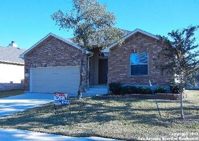 Bexar County Single Family Home For Sale: 12814 Point Gap