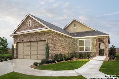 San Antonio Single Family Home New: 7363 Monets Garden