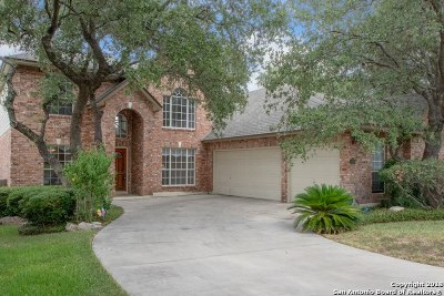 Bexar County Single Family Home New: 18515 Elmbrook