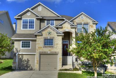 San Antonio Single Family Home New: 21214 Villa Valencia