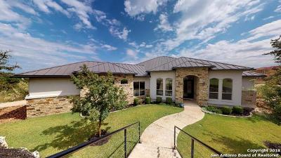 San Antonio Single Family Home New: 20018 Terra Canyon