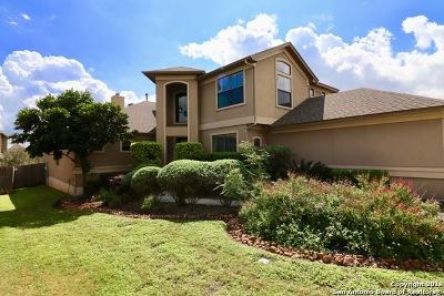 San Antonio Single Family Home New: 26326 Tuscan Park