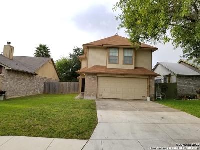 San Antonio Single Family Home New: 11338 Crescent Peak