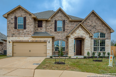 Boerne Single Family Home New: 113 Arbor Woods