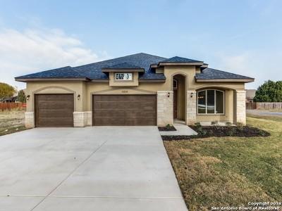 Blanco TX Single Family Home New: $349,999