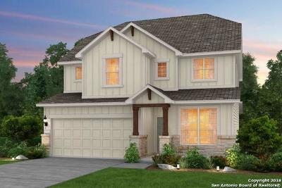 San Antonio Single Family Home New: 27339 Caroline Way