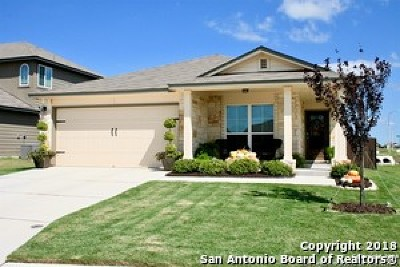 New Braunfels Single Family Home New: 2255 Hawk Dr