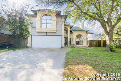 San Antonio Single Family Home New: 16903 Vista Briar Dr