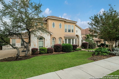 San Antonio TX Single Family Home New: $749,999