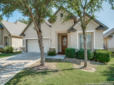 San Antonio Single Family Home New: 3647 Tea Rose Glen