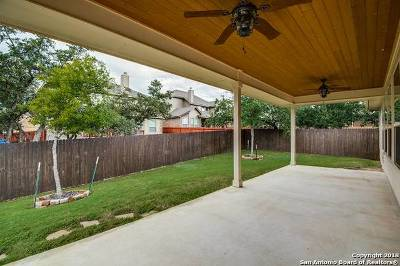 Boerne Single Family Home New: 27034 Oleander Chase