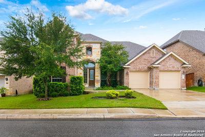San Antonio Single Family Home New: 24027 Prestige Dr