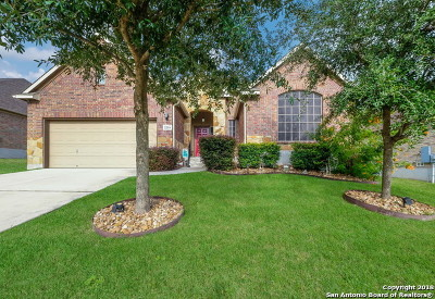 Schertz Single Family Home New: 2216 Oak Valley