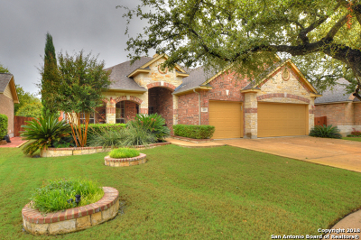 Cibolo Single Family Home New: 210 Daly Cv