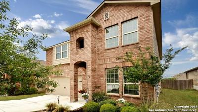 New Braunfels Single Family Home New: 2954 Sawmill Ln