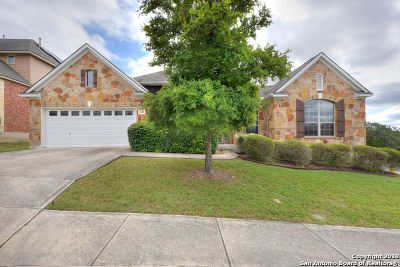 San Antonio Single Family Home New: 618 Olivia Dale