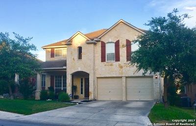 San Antonio TX Single Family Home New: $293,000