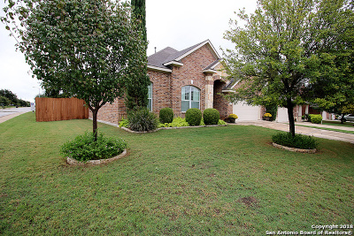 Bexar County Single Family Home New: 11735 Pandorea