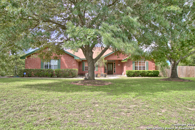 Guadalupe County Single Family Home For Sale: 233 Windwood Circle