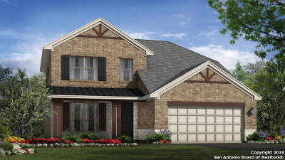 Cibolo Single Family Home New: 808 Silver Fox