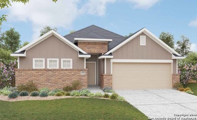 New Braunfels Single Family Home New: 3951 Legend Meadows