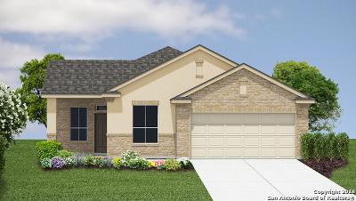 New Braunfels Single Family Home New: 708 Sheridan Park