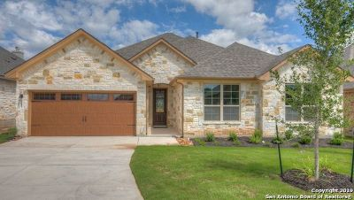 New Braunfels Single Family Home New: 247 Bamberger Ave