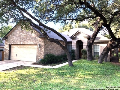 Bexar County Single Family Home New: 11811 Stanton Dr