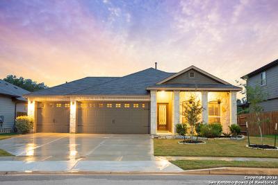 New Braunfels Single Family Home New: 255 Lillianite