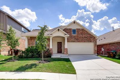 San Antonio TX Single Family Home New: $303,663
