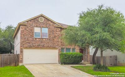 San Antonio Single Family Home New: 10226 Medio Creek