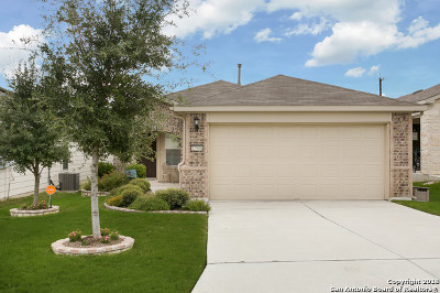 Bexar County Single Family Home New: 12906 Pronghorn Oak