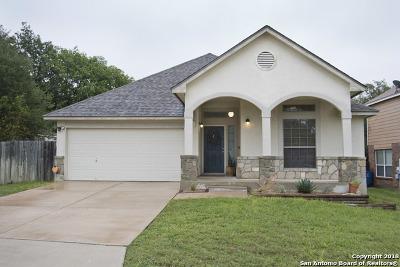 Bexar County Single Family Home New: 21114 La Pena Dr