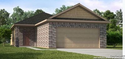 New Braunfels Single Family Home New: 117 Buttercup Bend