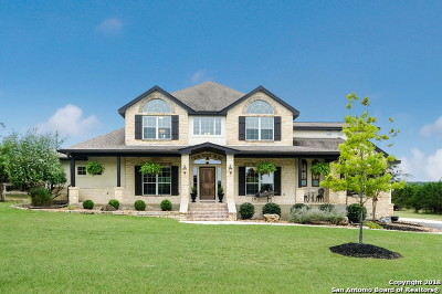 Boerne Single Family Home New: 154 Lake View Dr