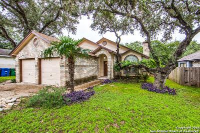 San Antonio TX Single Family Home New: $177,500