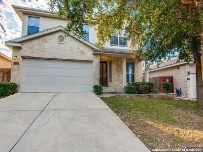 San Antonio TX Single Family Home New: $195,000