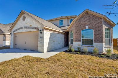 San Antonio TX Single Family Home New: $270,900