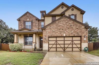 San Antonio TX Single Family Home New: $326,000