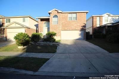 San Antonio Single Family Home New: 554 Diamond Falls