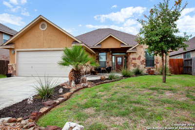 New Braunfels Single Family Home New: 948 Divine Way