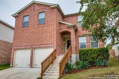 San Antonio Single Family Home New: 15806 Cotton Tail Ln