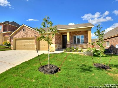 Bexar County Single Family Home New: 12627 Ozona Ranch