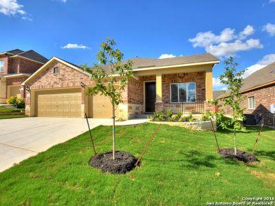 San Antonio TX Single Family Home New: $337,775