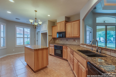 New Braunfels Single Family Home New: 117 Bandit Bay View