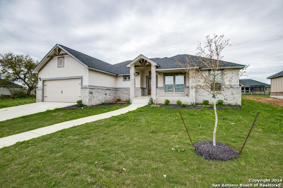 Floresville Single Family Home For Sale: 113 Grand View