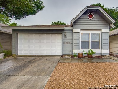 San Antonio Single Family Home New: 3924 Heritage Hill Dr